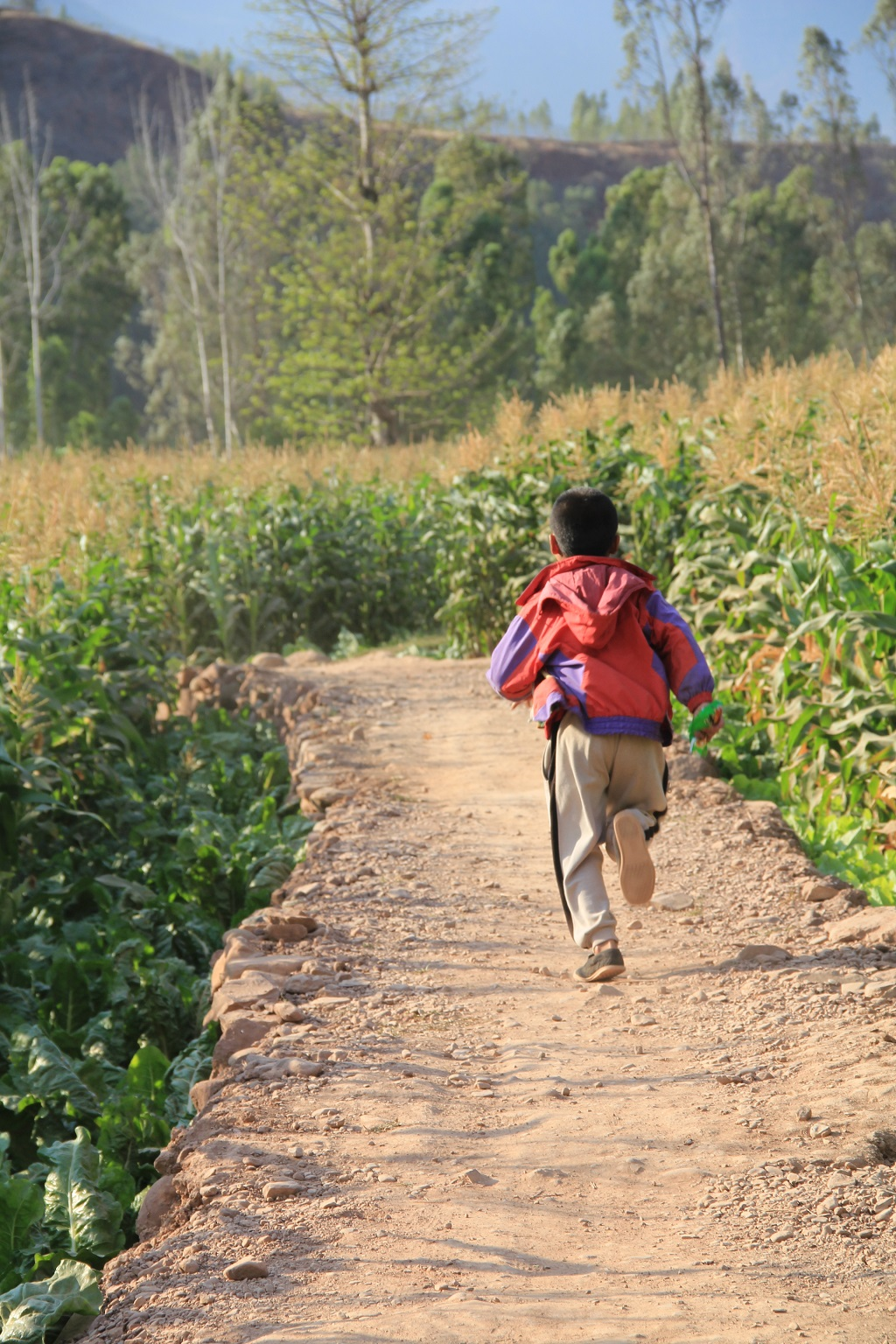 A kid running happily in the field