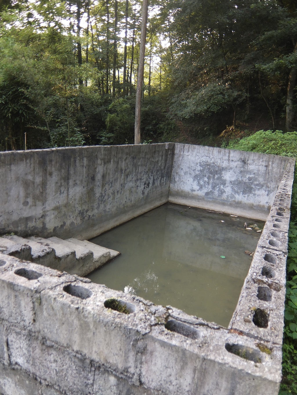 A resevoir for animals drinking